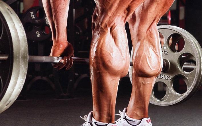 Функции мышц голени
